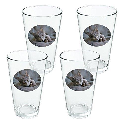 Gris Domestic Shorthair fourrure de chat fantaisie 453,6 gram Pinte à boire en verre trempé - Lot de 4