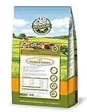 BELLFOR Gesundes Hundefutter Wildbach-Schmaus Wildachs & Bachforelle Getreidefrei 2,5 kg