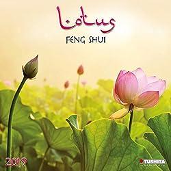 Lotus Feng Shui 2019: Kalender 2019 (Mindful Edition)