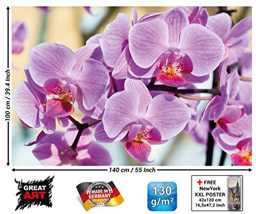GREAT ART XXL Poster - Orchideen - Wandbild Dekoration Blumen Natur Phalaenopsis Blüten Pflanze Knabenkraut Floristik Frühling Relax Wellness Spa Wandposter Wanddeko Bild (140 x 100 cm)
