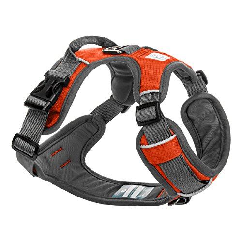 Embark Active Hundegeschirr, Größe verstellbar und ohne Choke (XL (104 - 120 cm, Orange)