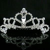 Boda Novia Dama flor Niñas Rhinestone pelo peines princesa corona