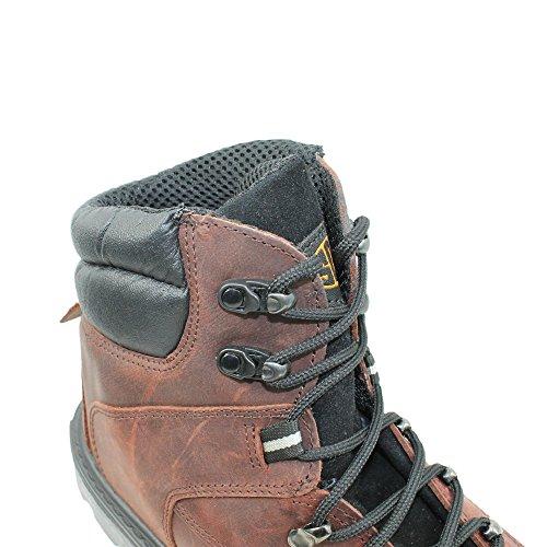 TuF s3 chaussures berufsschuhe businessschuhe chaussures de trekking-marron Marron - Marron