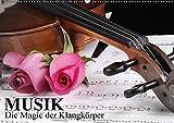 Musik - Die Magie der Klangkörper (Wandkalender 2018 DIN A2 quer): Eintauchen in die Wunderwelt der Musikinstrumente (Monatskalender, 14 Seiten ) ... [Kalender] [Apr 01, 2017] Stanzer, Elisabeth
