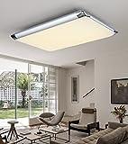 Natsen®Moderne LED Deckenlampe deckenleuchte Silber mit Fernbedienung voll dimmbar (I507C-36W-WJ)