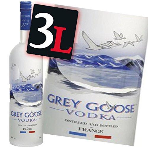 vodka-grey-goose-vodka-double-magnum-300-cl