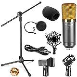 Neewer® Kit de Professionnel Studio Radio and Enregistrement Microphone à Condensateur et Support Comprend: (1) NW-700 Microphone à Condensateur + (1) NW-107 Type Pliant Réglable 13 \