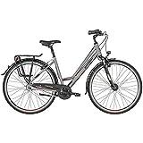 Bergamont Horizon N7 FH Amsterdam Damen Trekking Fahrrad silberfarben/schwarz 2019: Größe: 44cm (158-164cm)
