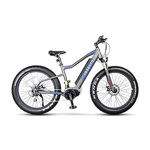 511YlfAeQaL. SS300 Argento Elephant PRO, Bicicletta Unisex Adulto