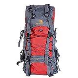 Puimentiua Mochila Senderismo Unisex de Gran Capacidad 60L Impermeable Mochilas para Excursionismo montañismo de Deporte con Tela Oxford