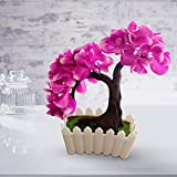 #6: TiedRibbons® Artficial bonsai tree plant with pot | bonsai tree plants for home decor| bonsai artificial tree | diwali home decoration items
