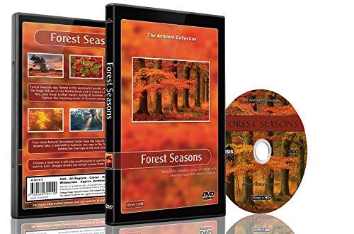 Natur DVD - Wald Jahreszeiten – Landschaft aus allen Jahreszeiten aus dem Wald mit Musik und natürlichen Geräuschen (Natürliche Strauß)