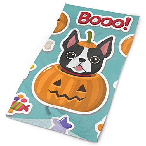AIQIIA Vector Set of Halloween Icons Stickers Unisex Sports Variety Scarf Head Scarf