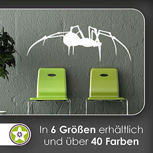 KIWISTAR Spinne Seite - Beine Spinnweben Vogelspinne Zecke Kanker Wandtattoo in 6 Größen - Wandaufkleber Wall Sticker