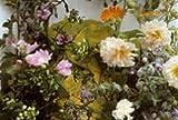 lot de 100 Graines herbes et fleurs COMESTIBLES semence envoi de france sous 48h graines certifié