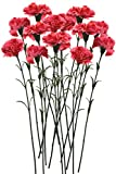 #1: Fourwalls Single Carnation (Set of 15, Dark Pink)