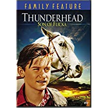 Coverbild: Thunderhead - Son of Flicka