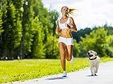 lishinu ORIGINAL Roll-Leine für Hunde von 8kg bis 30kg – SCHWARZ - 2