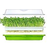 Huntfgold Seed Sprouter Tray Keimschale für Sprossen BPA-freies Samen Keimung Tablett extra kleines Loch kein Papier erforderlich für Garten Home Office