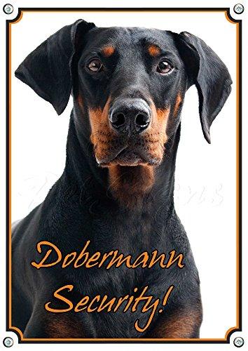 Petsigns Warnschild Dobermann - Security! Hundeschild - stabiles Metallschild, 2. DIN A4