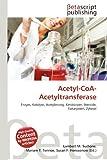 Acetyl-CoA-Acetyltransferase