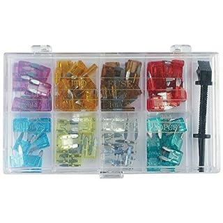 100 tlg KFZ-Sicherungen Set mini (8 Werte und Sicherungszieher) by ARTUROLUDWIG
