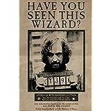 HWC Trading Foto impresa de Harry Potter con autógrafo de ...