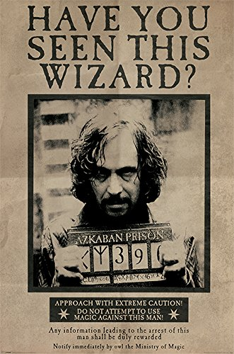 HARRY POTTER - Póster Texto inglés «Wanted Sirius