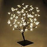 Arbre Lumineux 72 LED Fleurs, Pour Noël, Pour la Maison, Vacances, Mariages, Anniversaire, Nouvel An, Fête (Blanc Chaud)