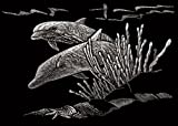 "Royal Brush Silver Foil Engraving Dolphin Reef Art Mini Kit, 5"" by 7"""