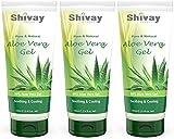 Premium Qualität Aloe Vera Gel 99% reines kaltgepresstes by Shivay Herbals 100ml x 3 Pack