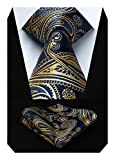 HISDERN Floral Paisley Wedding Tie Handkerchief Men's Necktie & Pocket Square Set (Gold Blue)