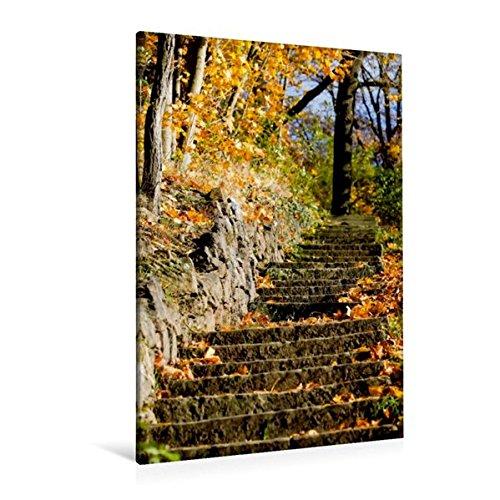 Preisvergleich Produktbild Premium Textil-Leinwand 80 cm x 120 cm  hoch, Goldener Oktober | Wandbild, Bild auf Keilrahmen, Fertigbild auf echter Leinwand, Leinwanddruck (CALVENDO Natur)