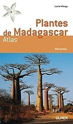 Plantes de Madagascar : Atlas (1Cédérom)