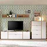 Lomadox TV-Mediawand SEATTLE-61 Retro-Stil in weiß matt und San Remo Nb. & Fernseh-Lowboard