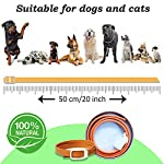 xcool flea and tick collar for dogs and cats, safe and healthy natural formula waterproof flea collar to kills repels mosquitoes ticks, 20 inch 90 days protection (19.7 inch) XCool Flea and Tick Collar for Dogs and Cats, Safe and Healthy Natural Formula Waterproof Flea Collar to Kills Repels Mosquitoes Ticks, 20 inch 90 days Protection (19.7 inch) 511atLbVUBL
