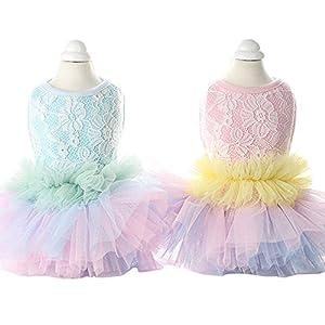 Lazzykit Robe de Mariage Chien Animal de Compagnie Jupe en Dentelle Princesse Chihuahua Vêtements