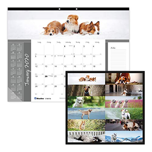 Blueline 2020 Monthly Desk Pad, English, Man's Best Friends Collection, 22 x 17 inches (C194116-20) (Clear Desk Pads)