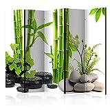 murando Raumteiler Foto Paravent Bambus grün 225x172 cm einseitig auf Vlies-Leinwand Bedruckt Trennwand Spanische Wand Sichtschutz Raumtrenner Zen Spa b-C-0230-z-c