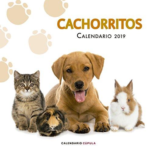 Calendario Cachorritos 2019 (Calendarios y agendas)