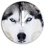 Niedlicher Husky Hund, Wanduhr Durchmesser 30cm mit weißen eckigen Zeigern und Ziffernblatt, Dekoartikel, Designuhr, Aluverbund sehr schön für Wohnzimmer, Kinderzimmer, Arbeitszimmer