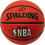 Spalding NBA Silver Logo Outdoor Basketball