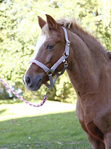 Covalliero 3210497 Pony Halfter-Set Lilli Führstrick Größe 1, Karo-Design