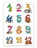 Hochwertiges Lernposter für Kinder Tierische Zahlen, 70 cm breit x 100 cm hoch, Dekoration, Kunstdruck, Wandbild, Fineartprint, Wandposter Poster für Kinderzimmer, Zahlenposter, Zählen lernen Poster