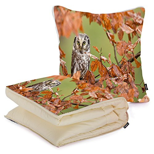 i-famuray-custom-square-pillow-with-super-warm-bed-blanket-2-in-1-northern-saw-whet-owl-in-an-autumn