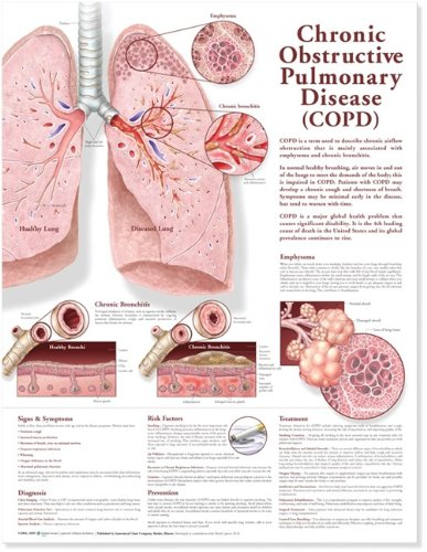 Chronic Obstructive Pulmonary Disease Anatomical Chart par  Anatomical Chart Company