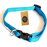 The Pets Company Cat Collar With Bell, Suitable For All Size Cats Turquoise Blue Color