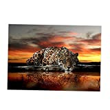 Sharplace 5D Diamant Diamond DIY Kreuzstich Stickerei Malerei Bild Stickpackung Painting - Leopard