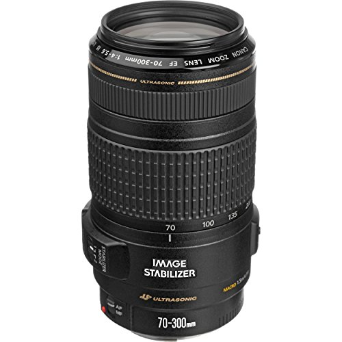 Canon EF 70-300mm f/4-5.6 IS USM Telephoto Zoom Lens for Canon DSLR Camera