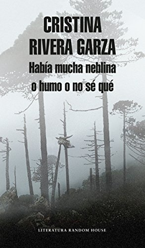 Había Mucha Neblina O Humo O No Sé Qué Caminar Con Juan Rulfo / There Was a Lot of Fog, or Smoke, or I'm Not Sure What: Walking with Juan Rulfo